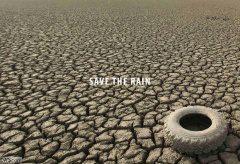 Save the Rain